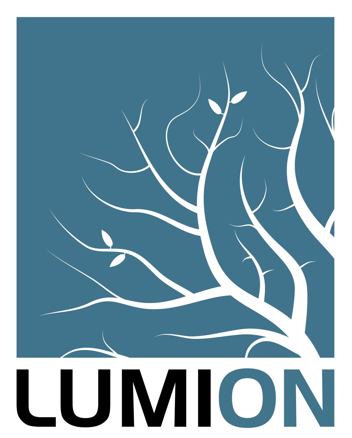 766Lumion_Logo_2016_TwoColors_On_White